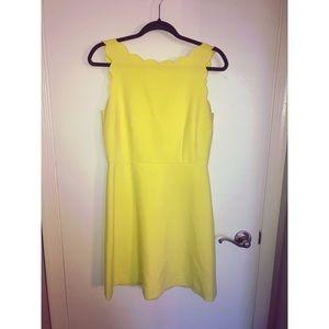 Loft - Scalloped Neck Dress